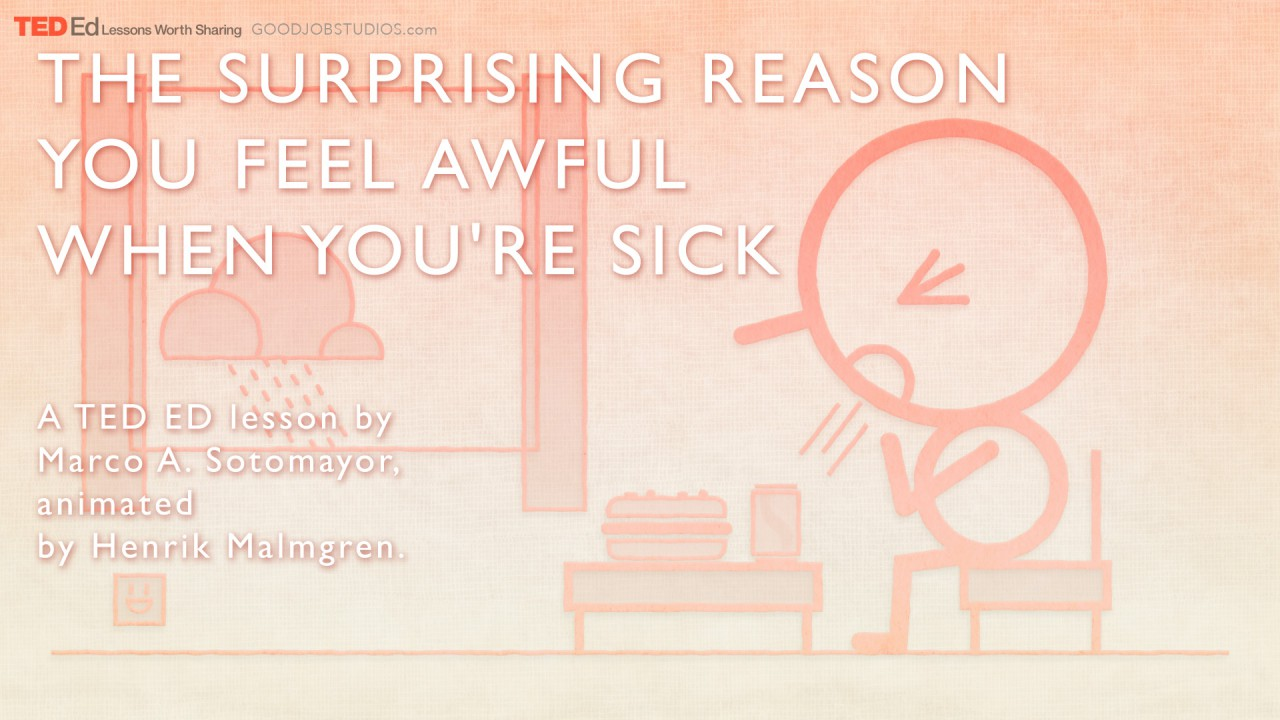 TED_ED_Surprising-Reason_splash